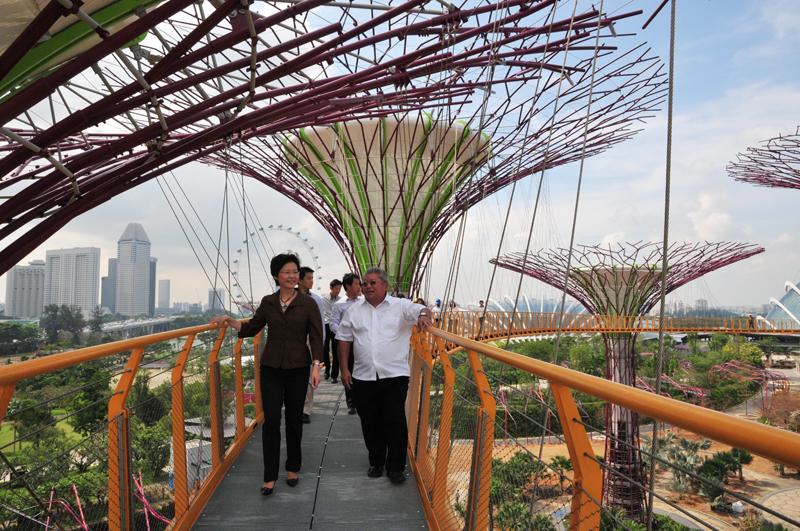 月十八日)参观新加坡全新景点滨海湾花园.  -发展局 摄影集