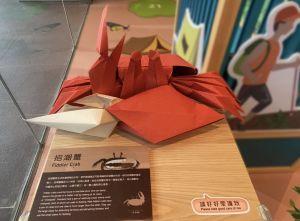 在「绿•活大屿」展览中,访客可欣赏到由著名摺纸艺术家陈柏熹创作的大屿山生物摺纸艺术作品。.