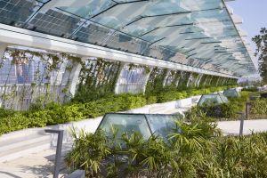 空中花园内有不少环保元素,包括玻璃檐篷上的太阳能板及地面的天窗;前者为园内的照明设施提供电力,后者让自然光可透射到公园下的行车道上。.