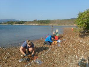 为尽量减低对该区海洋生态带来的影响,土拓署委讬鱼类专家就着海洋生态缓解措施作进一步研究及设计,例如详细的生态调查、寻找合适的接收地等。.