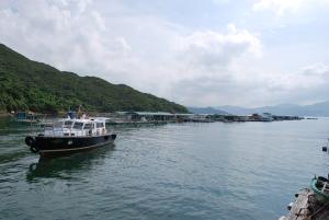 滘西村码头对外设有不少渔排,附近环境优美。码头改善后,将为渔民和游客带来更多方便。.
